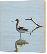 Bird Reflection Wood Print