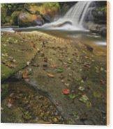 Bird Rock Falls Wood Print