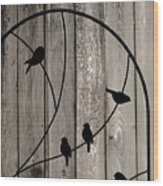 Bird Silhouettes On The Fence Wood Print