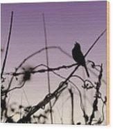 Bird Sings Wood Print