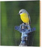 Bird Siting On A Water Sprinkler Wood Print