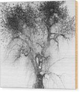 Bird Tree Land Bw Fine Art Print Wood Print