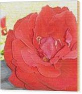 Bird Watching Red Rose Wood Print