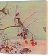 Bird Waxwing Wood Print