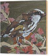 Bird White Eye Wood Print