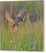 Bird With Prey Wood Print