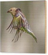 Bird2 Wood Print