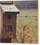Birdhouse - 1 Wood Print