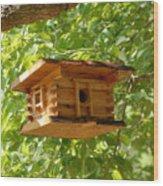 Birdhouse 5 Wood Print