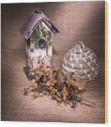 Birdhouse And Beehive 2 Wood Print
