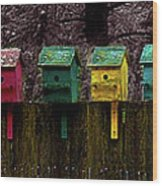 Birdhouse Beachfront Wood Print