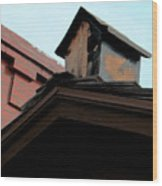 Birdhouse On Top Of House Wood Print