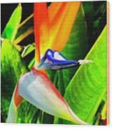 Birdie  Wood Print