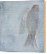 Birdness Wood Print