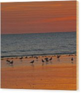 Birds Amongst The Glow Wood Print