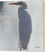 Birds And Fun At Butler Park Austin - Birds 2 Macro Wood Print by Felipe Adan Lerma