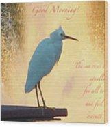 Birds And Fun At Butler Park Austin - Birds 3 Detail Macro Poster - Good Morning Wood Print