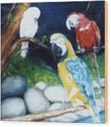 Birds At Rest Wood Print