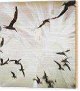 Birds Explosion Wood Print