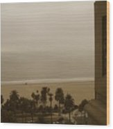 Birds Eye In Santa Monica Wood Print