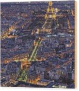 Bird's Eye On Paris 1 Wood Print