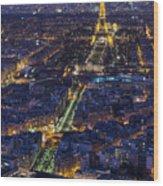 Bird's Eye On Paris 2 Wood Print