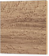 Birds-eye Pattern On Sugar Maple Wood Abstract In Nature Wood Print