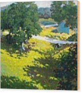 Birds Eye View Wood Print