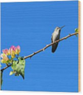 Bird's Eye View Wood Print