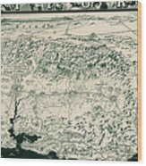 Birds-eye View Of California Wood Print