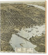 Birds Eye View Of Jacksonville Florida 1893 Wood Print