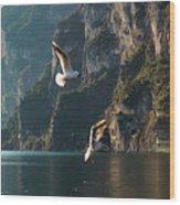 Birds Fishing Wood Print