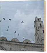 Birds Flying Above The Basilica And The Monastery Of Saint Francis Of Assisi Wood Print