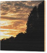 Birds Flying At Sunset Wood Print