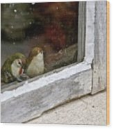 Birds In A Window Wood Print