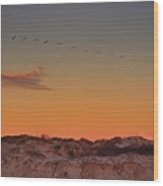 Birds In Flight At Sunrise Wood Print