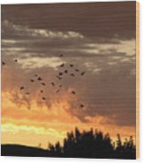 Birds In The Sky Wood Print