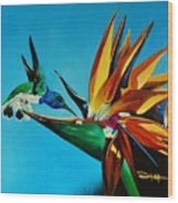 Birds Of Paradise With White Necked Jacobin Hummingbird Wood Print