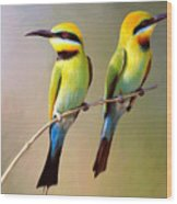 Birds On A Branch Wood Print