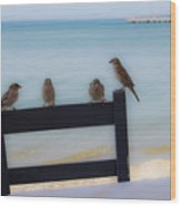 Birds On A Chair Wood Print