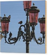 Birds On A Lamp Post In Venice Wood Print