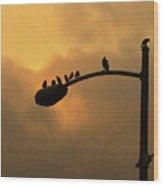 Birds On A Post Amber Light Detail Wood Print
