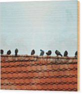 Birds On A Rooftop Wood Print