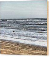 Birds On Beach 2 Wood Print