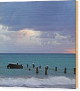 Birds On Old Jetty- St Lucia Wood Print