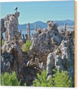 Birds On Tufa Towers-mono Lake Wood Print