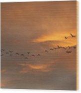Birds Over San Miguel De Allende Wood Print