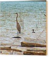 Birds Reflections Wood Print