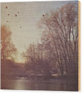 Birds Take Flight Over Lake On A Winters Morning Wood Print