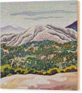Birdseye Landscape #4 Wood Print
